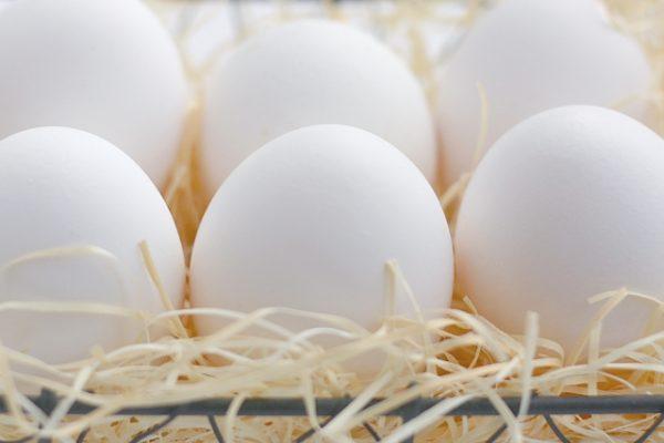 日本の卵は約95%が外国の鶏!?【