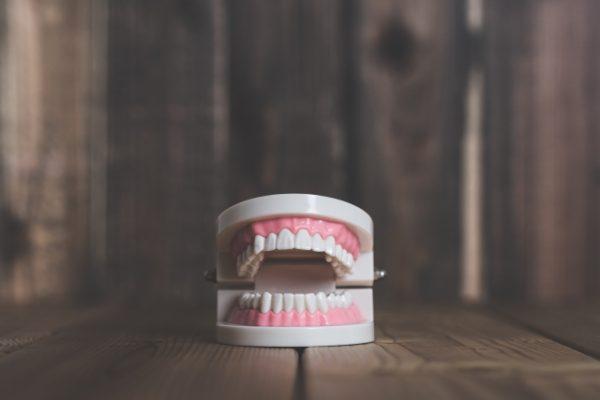 プロポデンタルEXの歯磨き粉